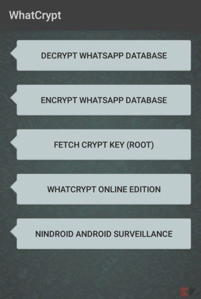 Decrypt messages and database WhatsApp | BitFeed co