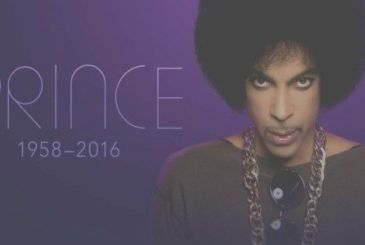 The music of Prince arrives on Apple's Music and other streaming services from February 12,