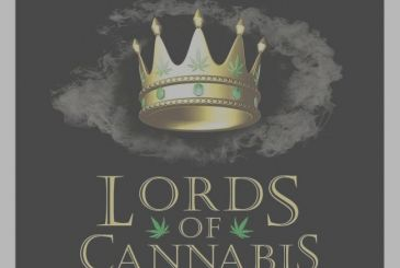 Lords of Cannabis: Here's what happens when the Settlers of Catan smoke too much grass