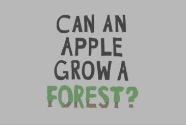 Apple announces its project for the protection of forests