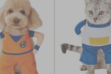 Bandai launches the cosplay for pets
