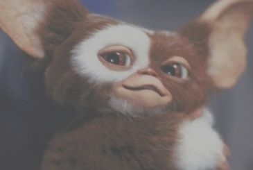 Gremlins: in development an animated series prequel