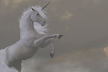 The Throne of Swords: unicorns in the book spin-off?