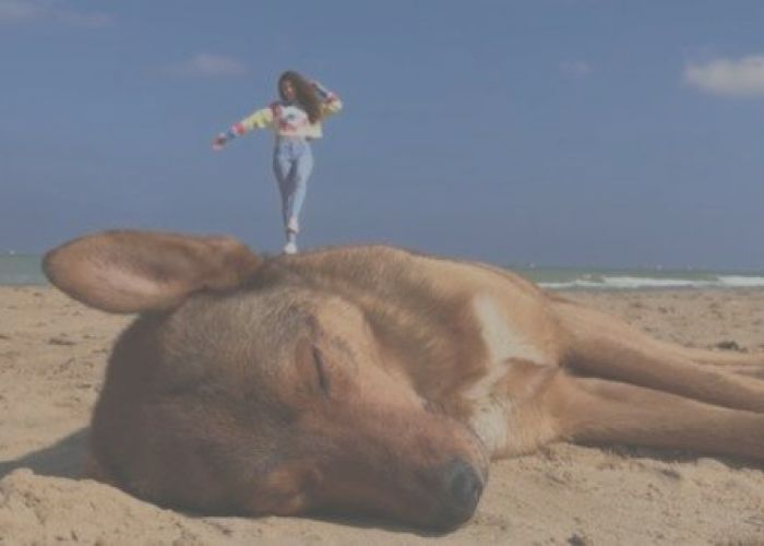 Apple released three new commercials dedicated to ...